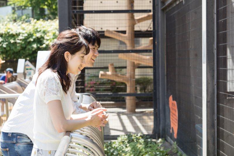 動物園にいるカップル