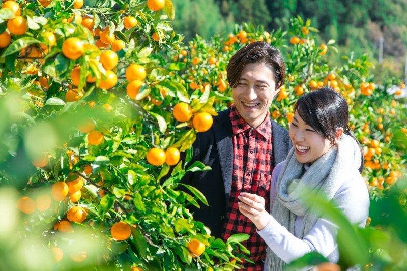 果樹園にいるカップル