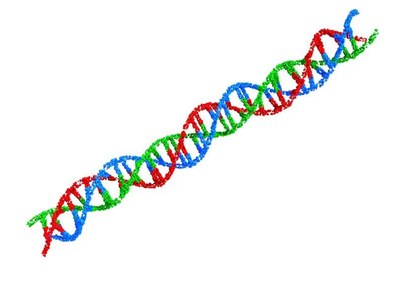 遺伝子の画像